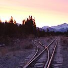 White pass and Yukon railroad at sunrise by Istvan Hernadi