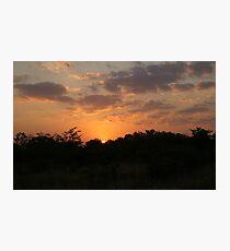 South Africa Sunset - Wild Afrika Photographic Print