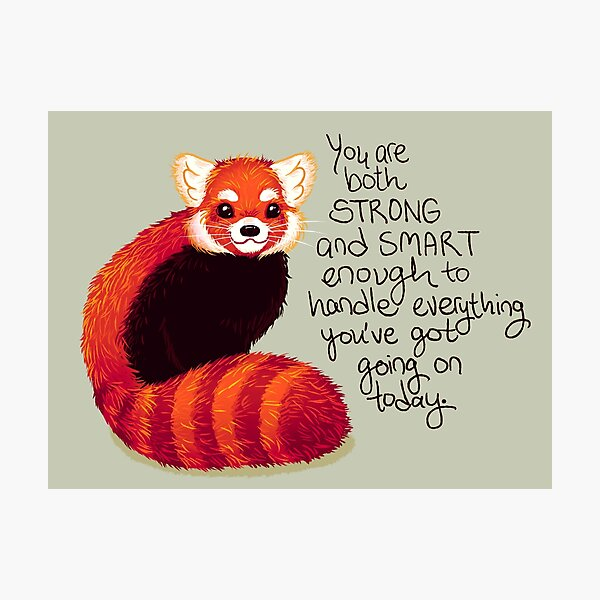 """""""You are both STRONG and SMART enough"""" Red Panda Photographic Print"""