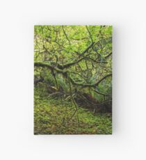 Mossy Forest Hardcover Journal