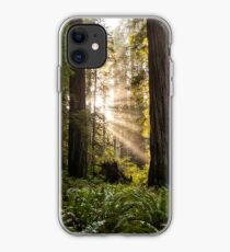 Forest Sunrays iPhone Case