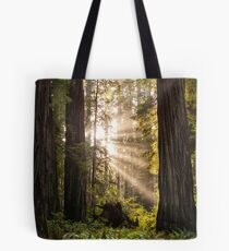 Forest Sunrays Tote Bag