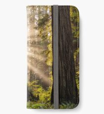 Forest Sunrays iPhone Wallet/Case/Skin