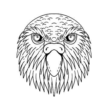 Kakapo Owl Parrot Head Drawing Black and White by patrimonio