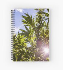 Sunshine Ganja Spiral Notebook