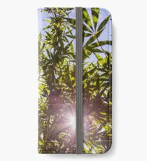 Sunshine Ganja iPhone Wallet/Case/Skin