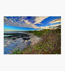 Morning View  Photographic Print