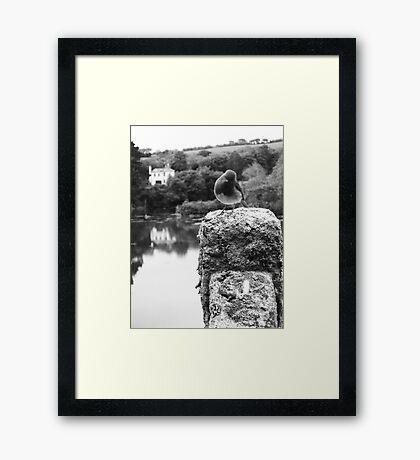 GATEKEEPER Framed Print