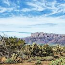 Arizona Superstition Mountains by 2HivelysArt