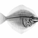 FLOUNDER by Paul CESSFORD
