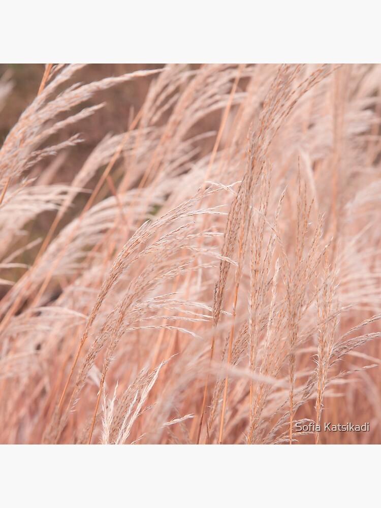 Autumn Grass by Sofiakat