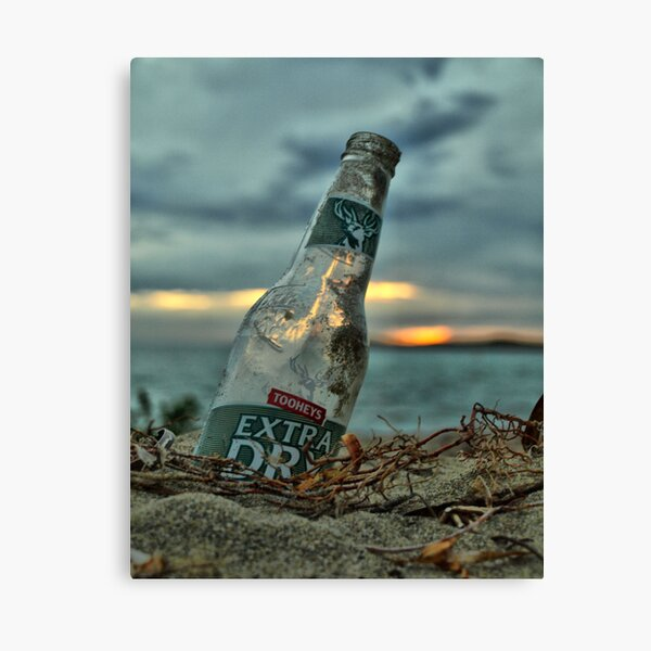 Remenents of a Nice Day Canvas Print
