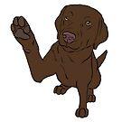 High Five Chocolate Labrador  by rmcbuckeye
