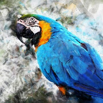Colorful Parrot by ErianAndre