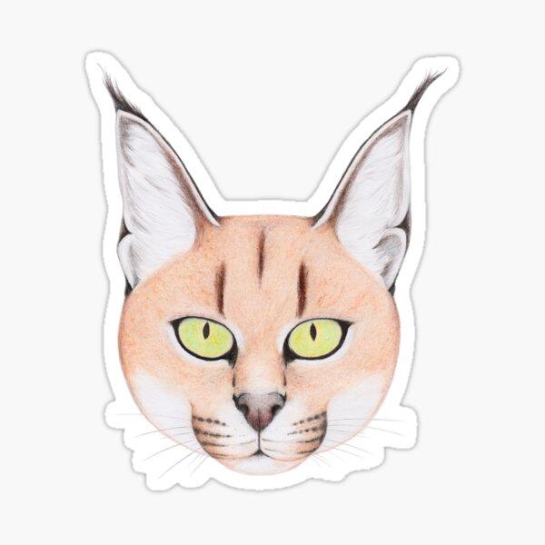 African Caracal Cat Sticker