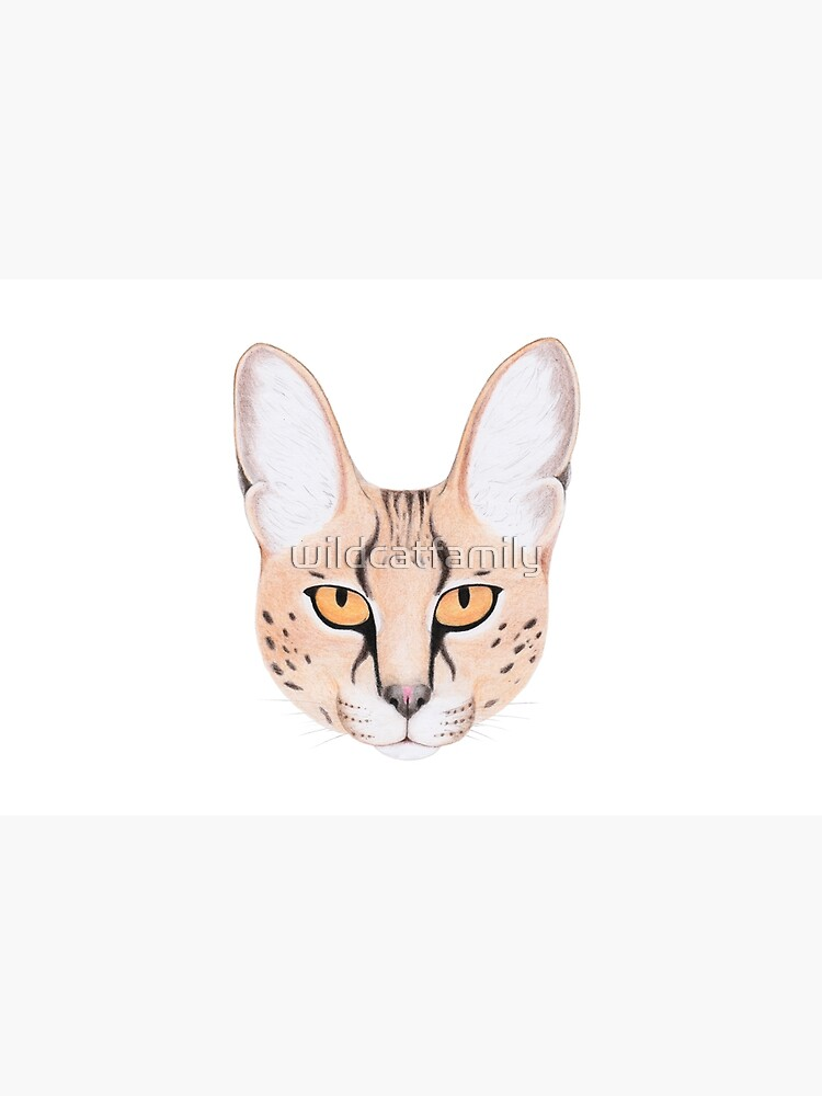 African Serval Cat by wildcatfamily
