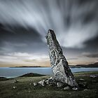 MacLeod's Stone by David Bowman