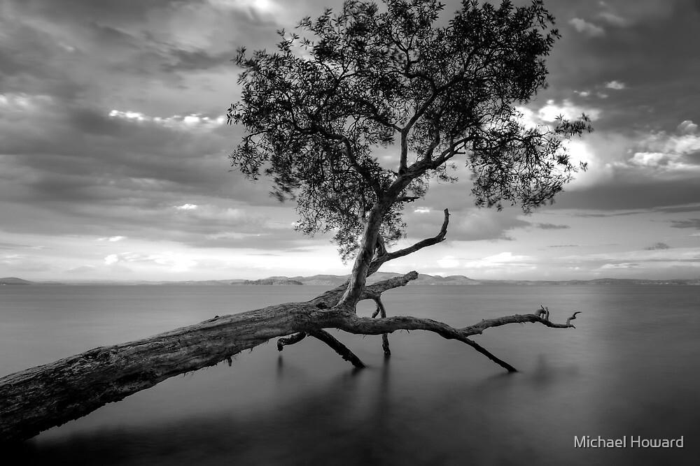 Salt Water  by Michael Howard