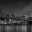 New York - USA by Mattia  Bicchi Photography