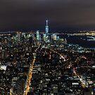 New York - Panorama by Mattia  Bicchi Photography