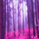 Fairytale #pink by armine12n