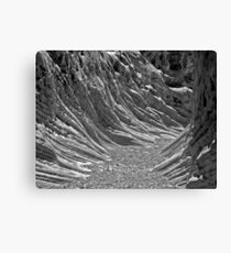 Neural Canyon Canvas Print