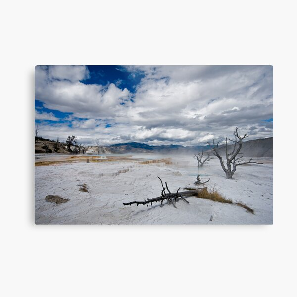 Yellowstone hot springs Metal Print