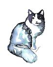 Beautiful Cat, Posing by Kendra Shedenhelm