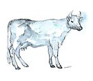 Cow Sketch by Kendra Shedenhelm