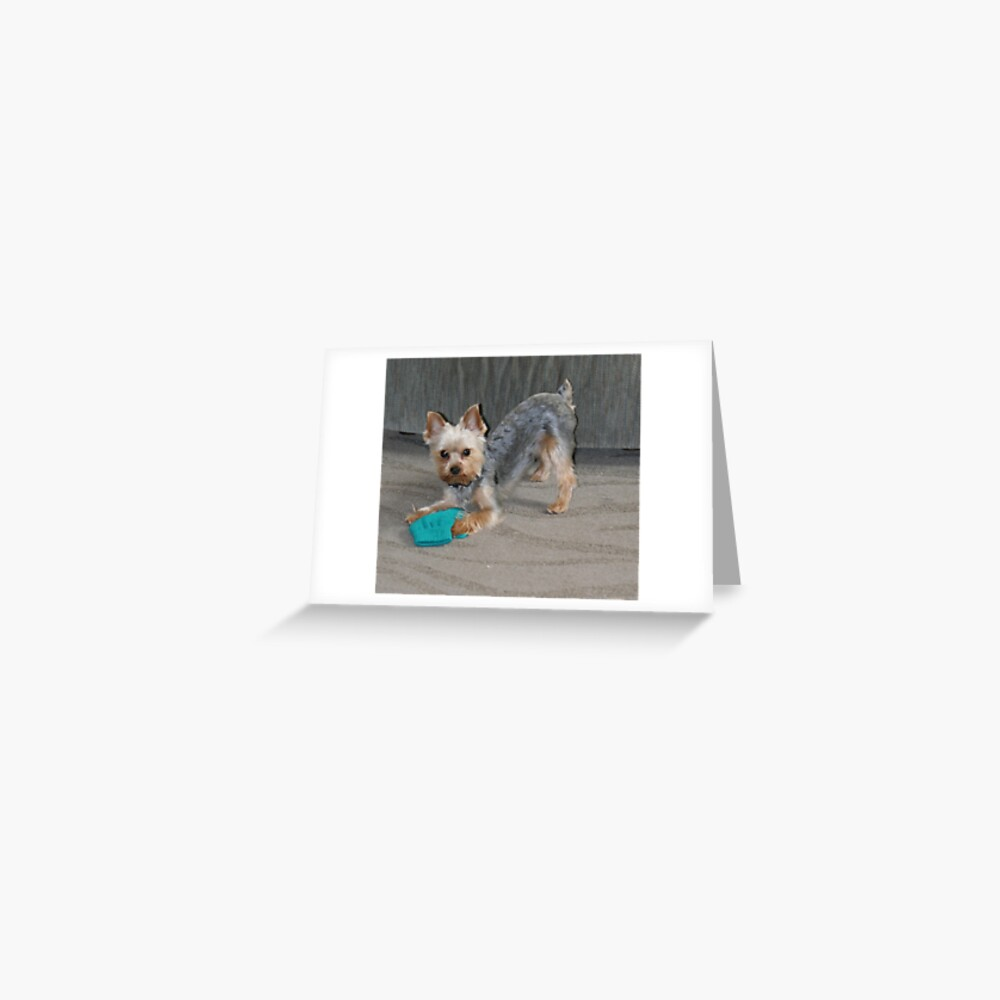 My Little Bailey Greeting Card