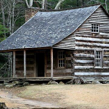 Carter Shields Cabin II by suddath