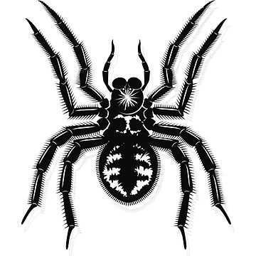 SPIDER by TOMSREDBUBBLE