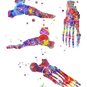 Foot bones, foot bones anatomy, watercolor foot bones by Rosaliartbook