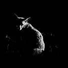 Alone in the Dark by Peter Denness
