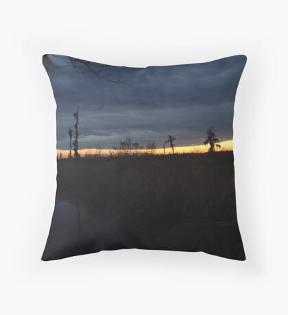 Weather Front Throw Pillow