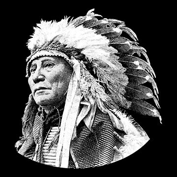 Chief Hollow Horn Bear Graphic by warishellstore