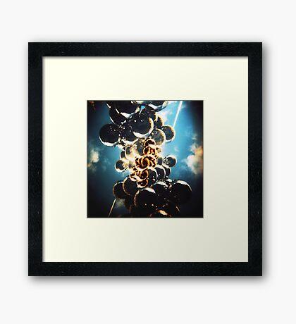 kapoor Framed Print