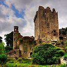 The way to Blarney Castle by Tom Gomez