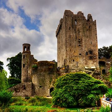 The way to Blarney Castle by tomg