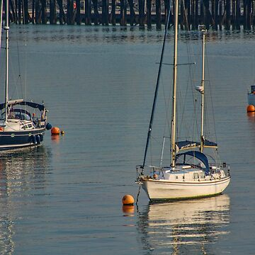 Three Boats in Southampton Harbour, UK by gerdagrice