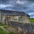 Forgotten Farm Ireland by Phillip Cullinane