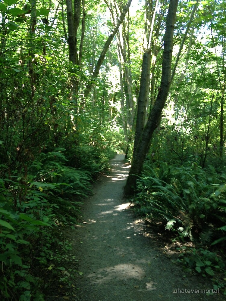 Trail through Discovery Park by whatevermortal