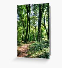 Castle Bernard Grounds Ireland Greeting Card