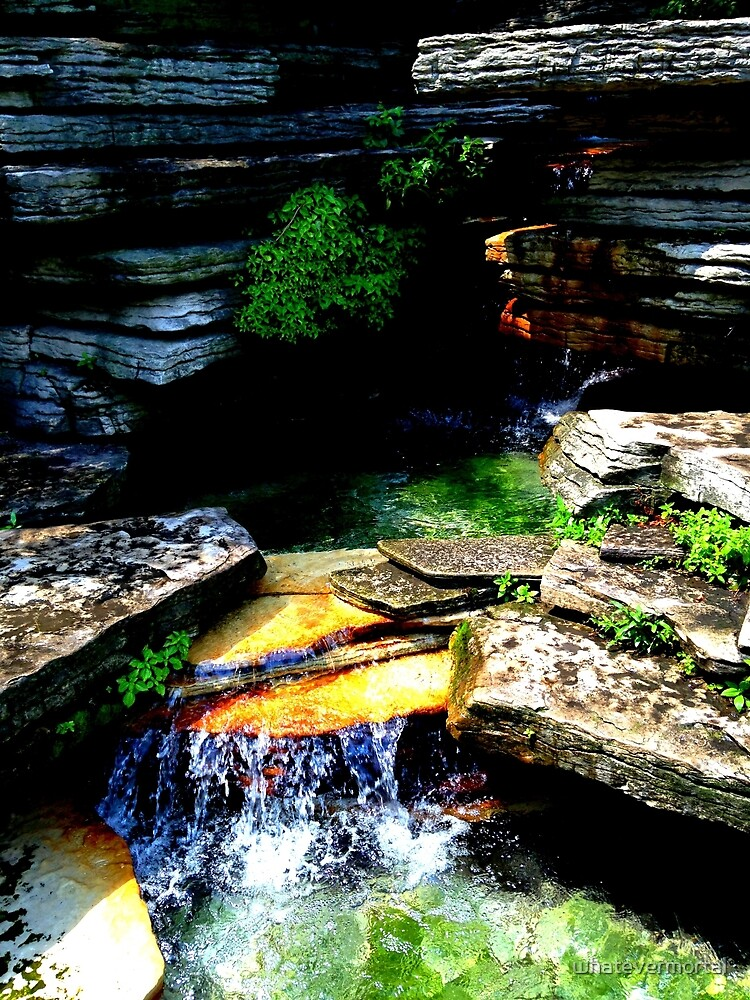 Waterfall in Alfred Caldwell Lily Pool by whatevermortal