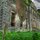 Castle Bernard Ireland by Phillip Cullinane