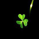 Green  by AnaBanana