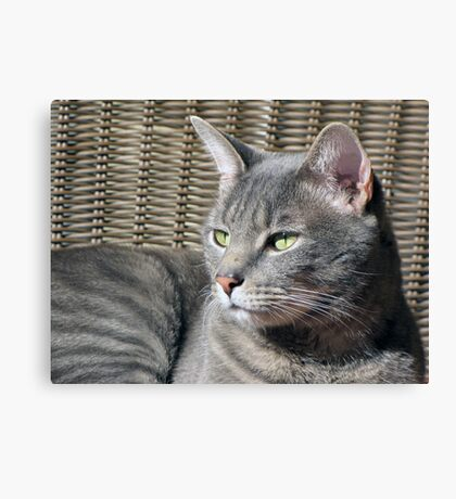 My Little Boy Canvas Print