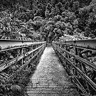 Bridge to Bamboo by MightyGeekMan