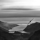 Flying to Garda by Antonio Zarli
