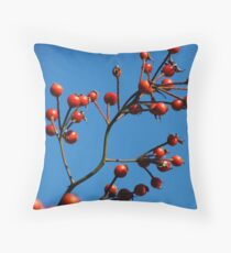 Complimentary Colors Throw Pillow